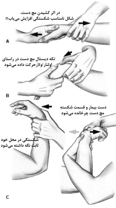 physiotherapy4